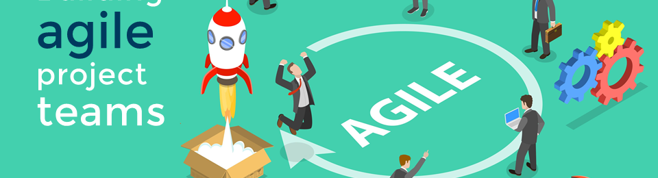 How to Build an Agile IT Project Team